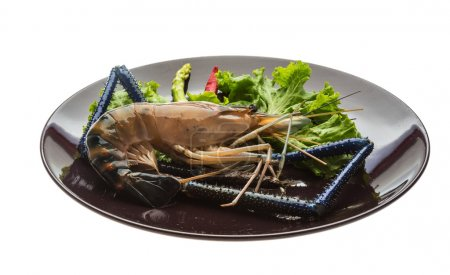 Photo for Big Freshwater prawn ready for cooking - Royalty Free Image