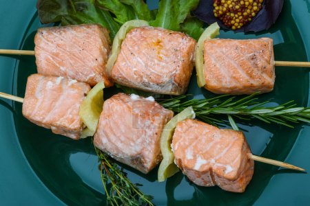 Photo for Salmon skewers with rosemary, salad, pepper and spices - Royalty Free Image