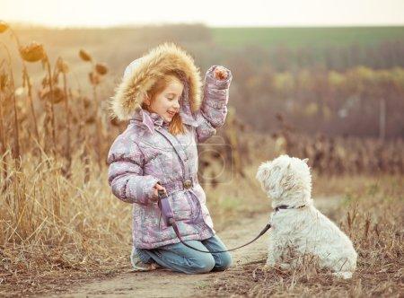Photo pour Fille heureuse avec son chien race White Terrier marche dans un champ en automne - image libre de droit