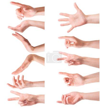 Photo pour Collage photo de mains féminines sur un fond blanc - image libre de droit