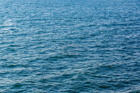 Photo for Blue sea with waves in sunny summer day - Royalty Free Image