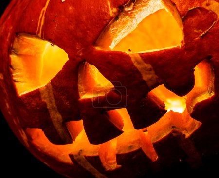 Halloween, old jack o lantern on black background...