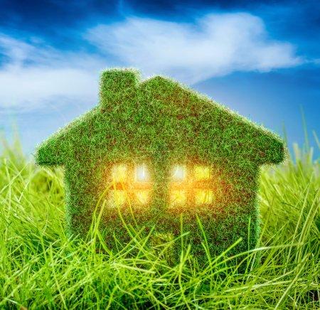 Little Eco House