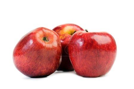 Photo pour Pommes rouges sur fond blanc - image libre de droit