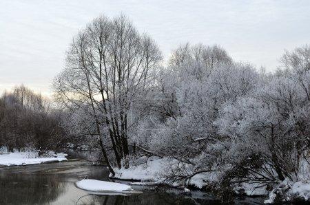 Photo pour Paysage hivernal avec givre blanc sur les arbres près de la rivière - image libre de droit
