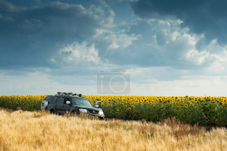 SUV into the field
