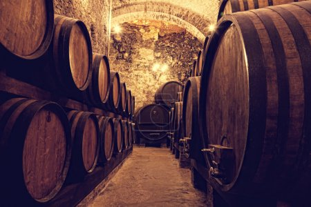 Wooden barrels with wine