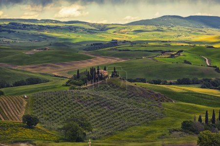 Farmer estate with vineyards