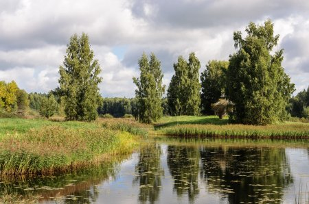 Rural landscape with small lake in Pushkinskiye Gory