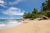 Unspoiled tropical beach in Sri Lanka.