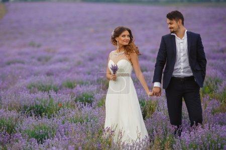 Wedding lavender field.