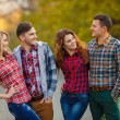 Постер, плакат: Two young couples spend time in the Park in early autumn