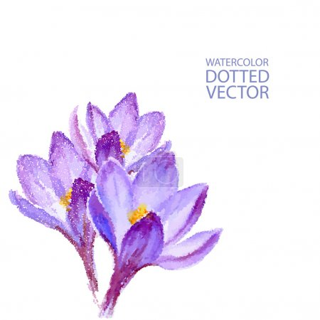 Illustration for Vector dotted watercolor purple flowers on white backdrop. Isolated hand drawing violet crocuses. Floral illustration bouquet for invitations, cards, greetings with best wishes - Royalty Free Image