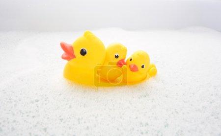 Photo pour Trois canards en caoutchouc dans de l'eau de mousse. Vue arrière - image libre de droit