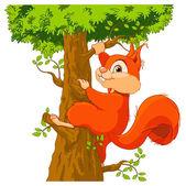 Cute squirrel climbs a tree