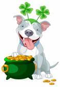 Illustration of cute Pit bull celebrates Saint Patrick Day