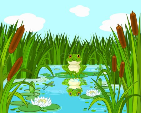 Pond scene with frog sits on the lily