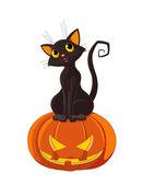 Black cat is sitting on Halloween pumpkin