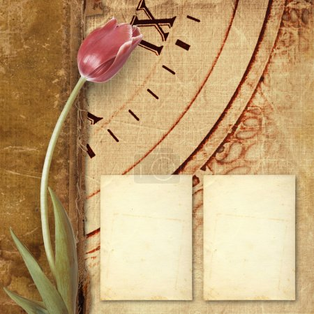 Old vintage album with  beautiful pink tulips