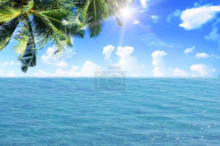 Palm leaves over tropical beach