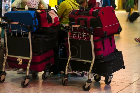 luggage at carts in airport