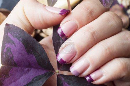 Female nails with purple manicure design