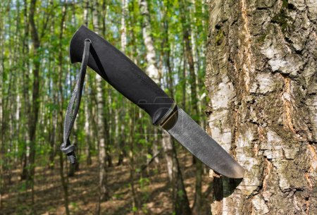 Knife stuck into a tree