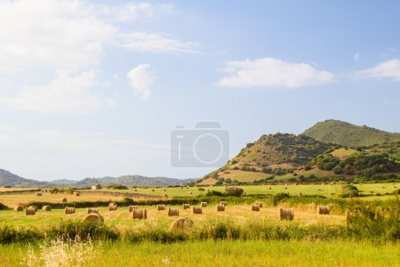Menorca island landscape with farmland and green hills