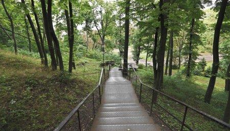 Photo pour Escalier dans le parc avec des arbres - image libre de droit
