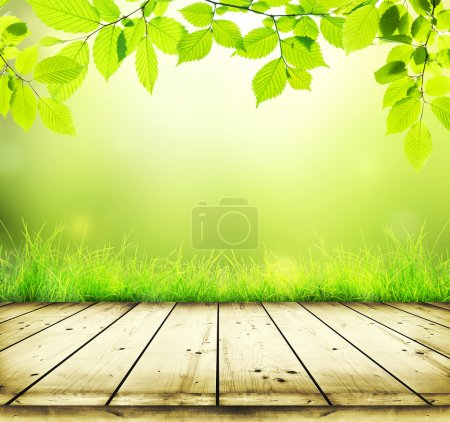Photo for Beautiful bakground from branches with leaves and grass and wooden planks - Royalty Free Image