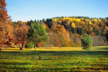Idyllic autumn scenery in Lithuania