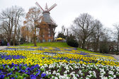 Famous Am Wall Windmill in Bremen