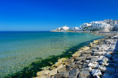 Spectacular view of Vieste town