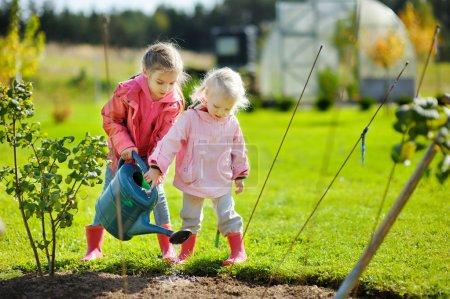 girls helping in a garden