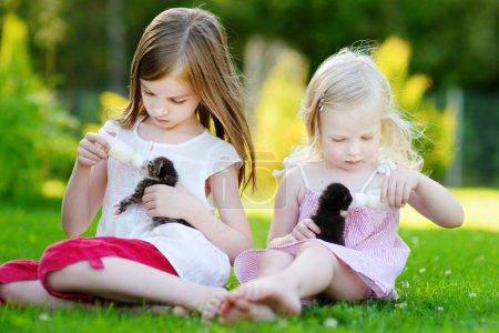 sisters feeding kittens with milk