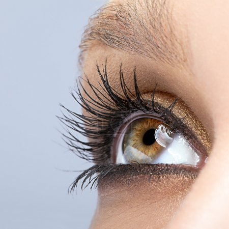 Woman female eye