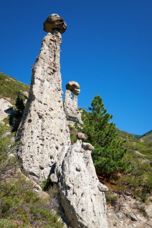 Nature phenomenon Stone Mushrooms in Altai mountains near river