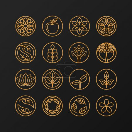 Illustration for Vector abstract emblem - outline monogram - nature symbols - concept for organic shop - set of abstract design element- logo design template - Royalty Free Image