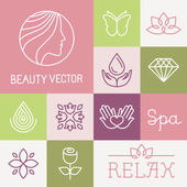 Vector spa and cosmetics logo design templates in trendy linear style - flowers leaves and icons
