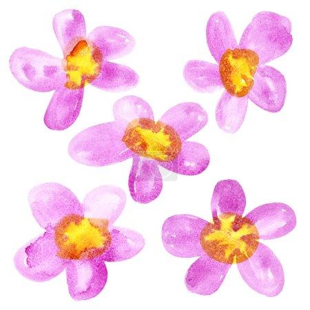 Foto de Rosa - flores acuarela amarillo aislados sobre fondo blanco - Imagen libre de derechos