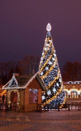 Beautiful Christmas tree and Santa's house in nigh...