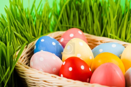 Photo for Easter eggs in basket on meadow - Royalty Free Image