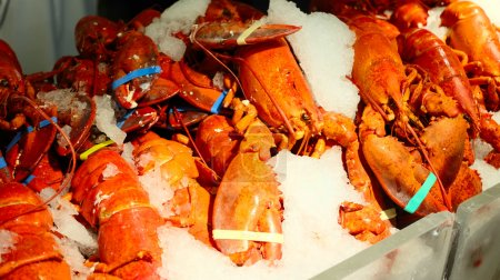Lobsters on Ice at market