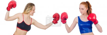 Women are fighting isolated on white