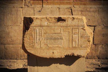 Egypt hieroglyphs carved on  stone
