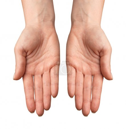 Photo for Woman Hands gestures on over white background. Isolated. - Royalty Free Image