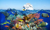 Ship and colorful underwater