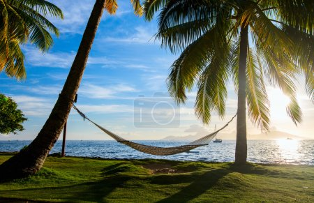 Photo for Hammock silhouette with palm trees on a beautiful beach at sunset - Royalty Free Image
