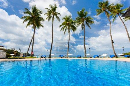 Foto de Hermosa playa tropical con palmeras, agua turquesa, arena blanca y cielo azul en la exótica isla - Imagen libre de derechos
