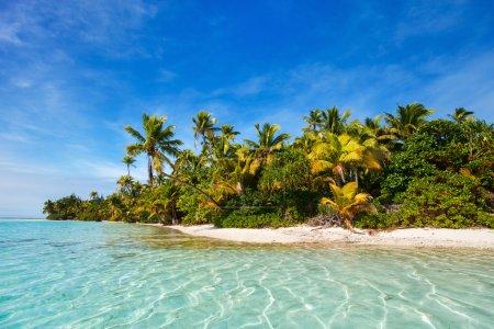 Stunning tropical island with palm trees, white sa...